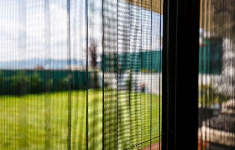 Nenahraditeľný pomocník v domácnosti: Prečo je dobré používať sieťky na okná?